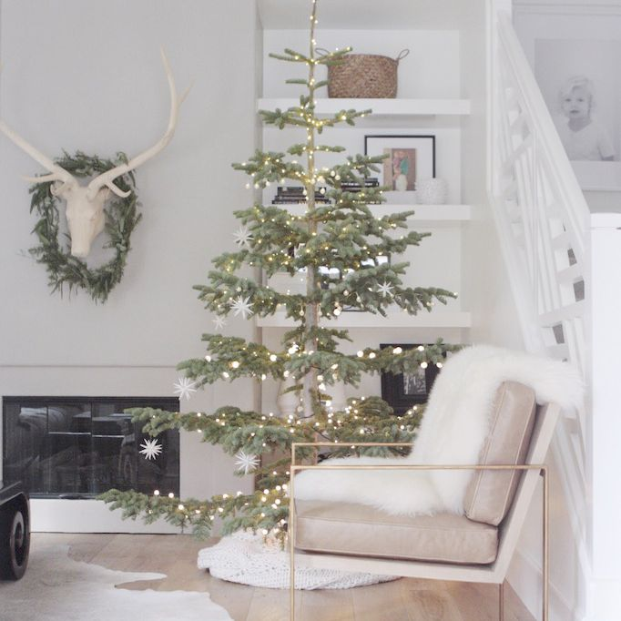 living room with a tree and antlers