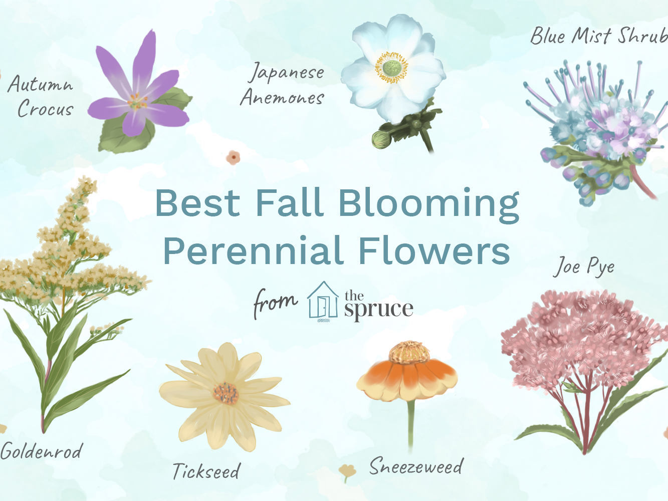 fall flower arrangements wth hay rasng kds and.htm top 14 fall blooming flowers for a perennial garden  top 14 fall blooming flowers for a