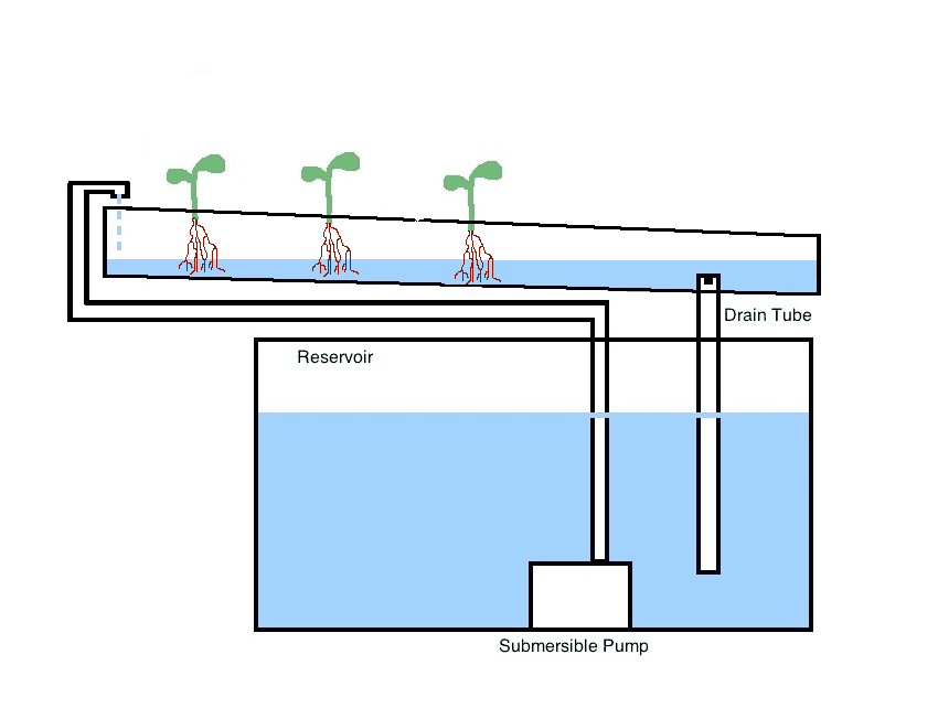 Diagram of a Nutrient Film Technique System