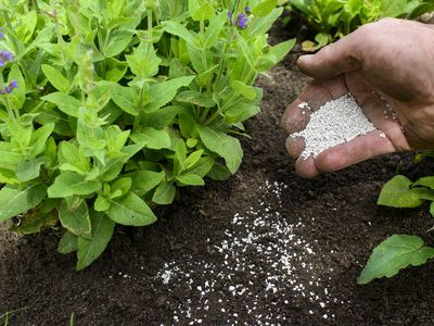 Toxicity of Weed & Feed Combo Lawn Products