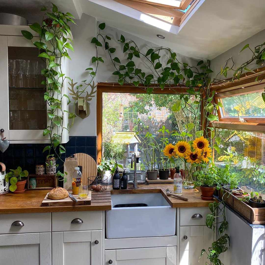 Sunny kitchen with a window