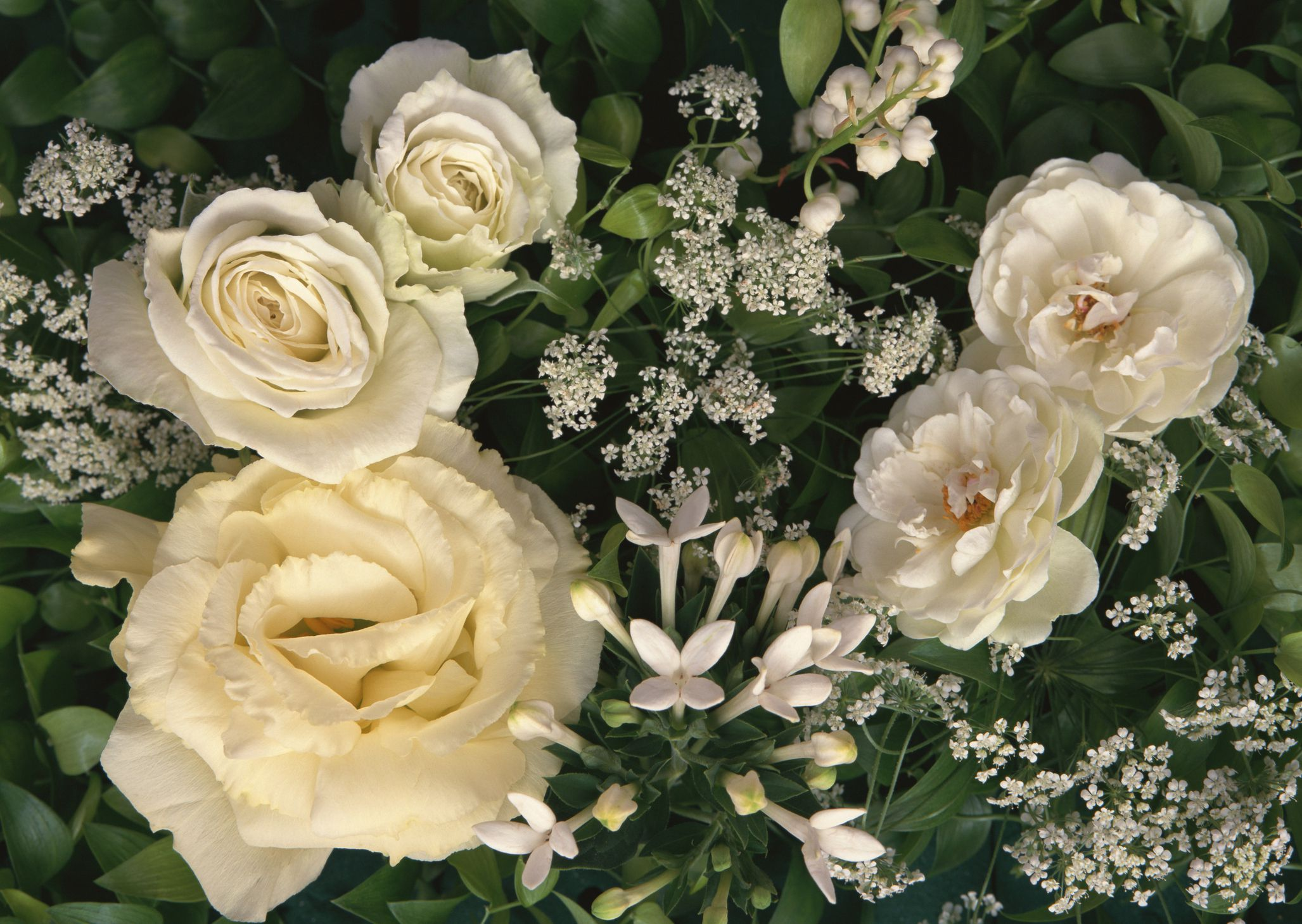 Filler Flowers For Wedding Bouquets