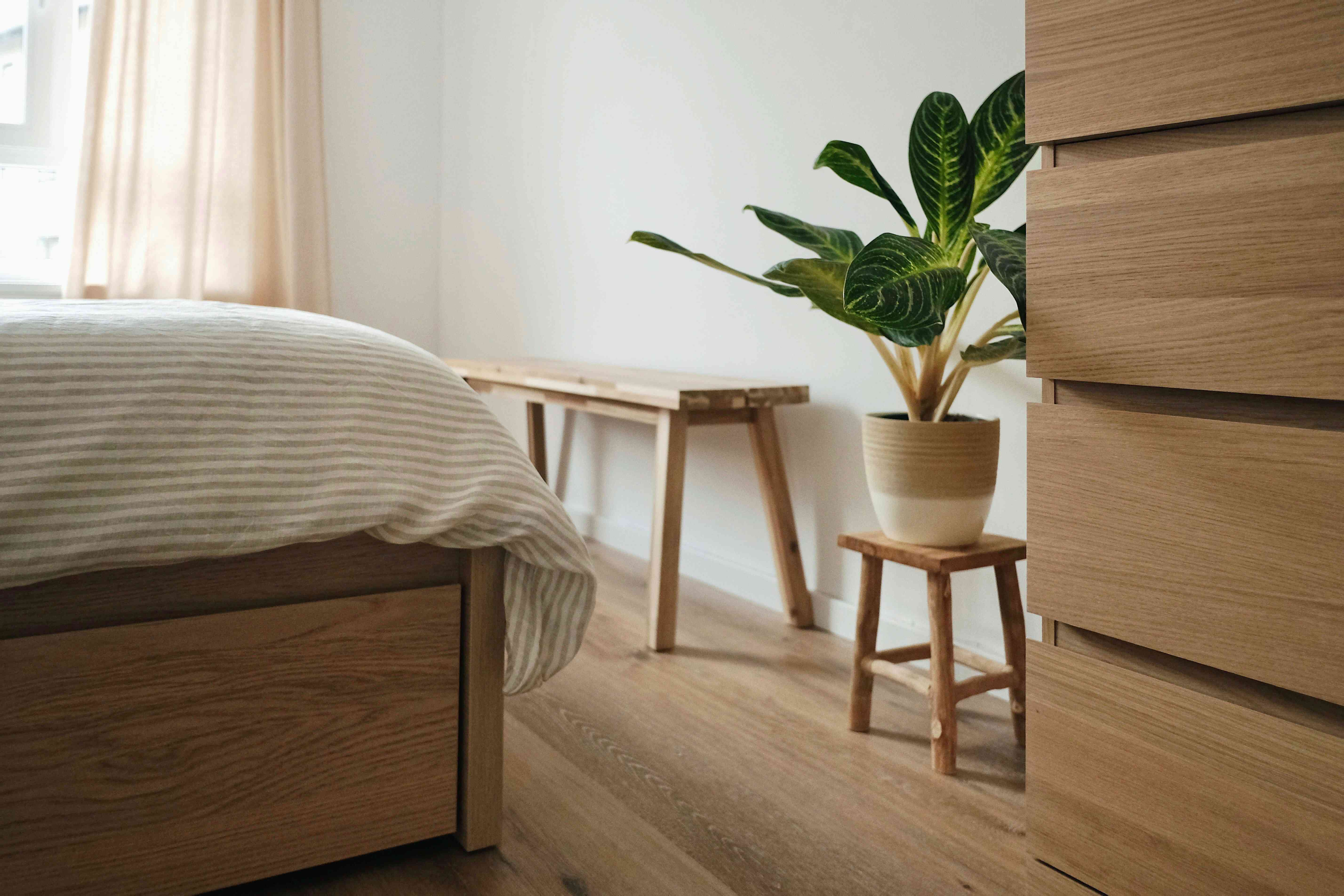 bedroom with wood furniture and a green houseplant