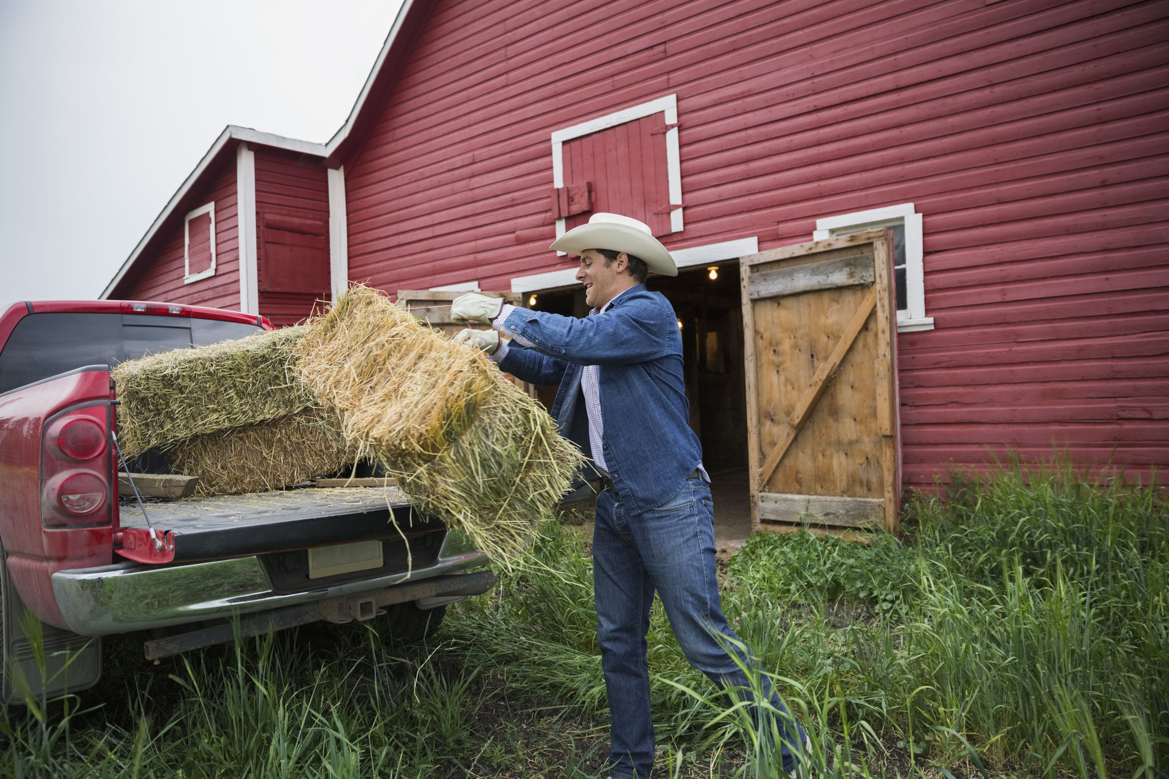 Man lifting hay bale out of truck