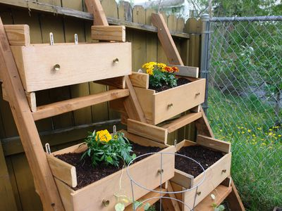 Dresser Turned into a Vegetable Garden