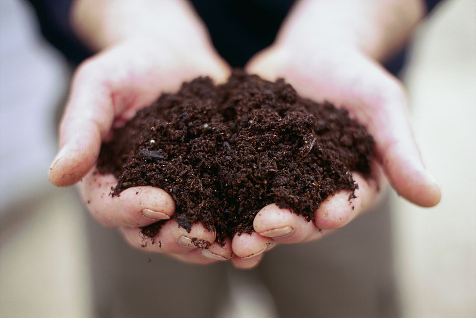 Person holding handfull of soil