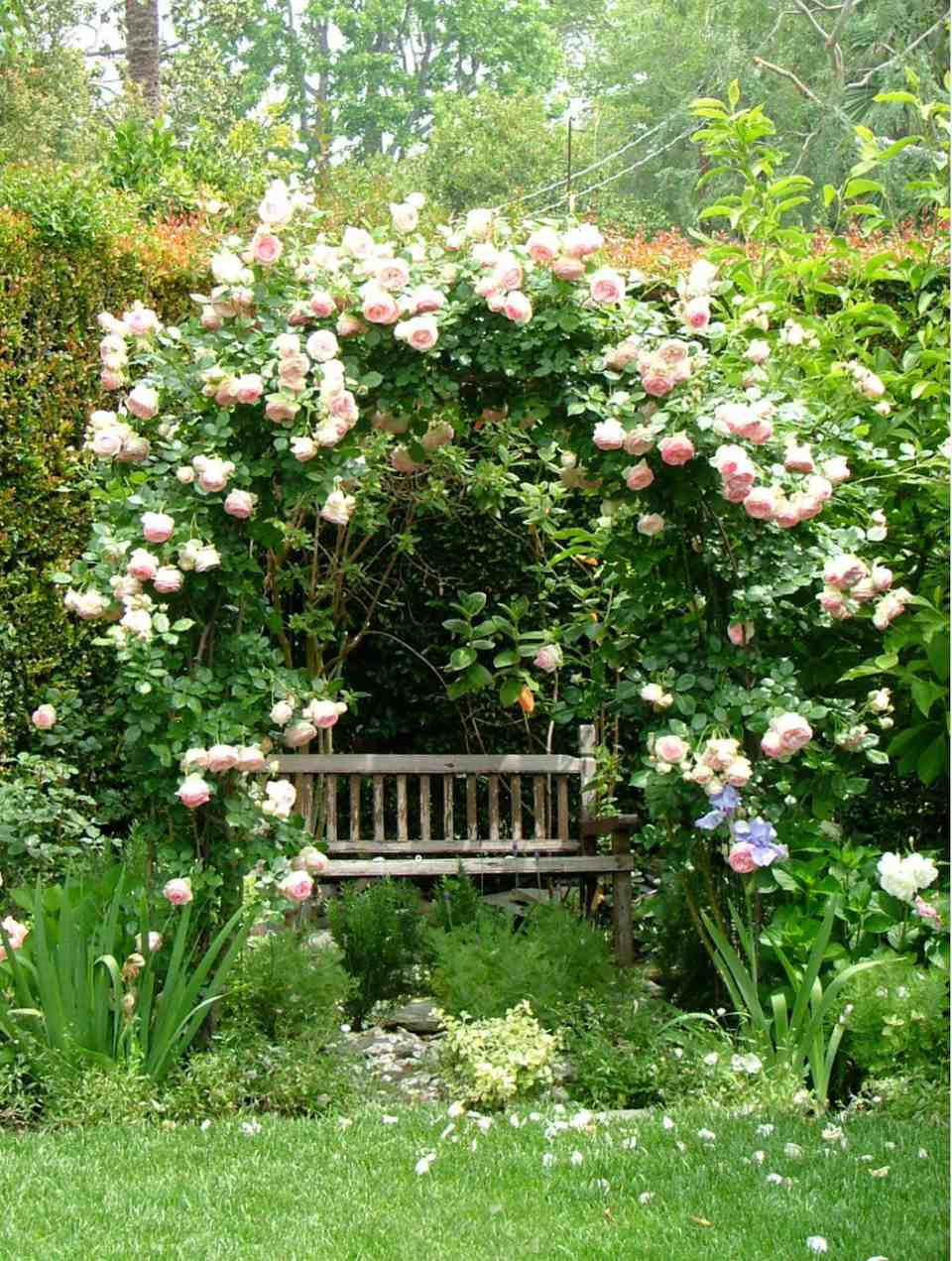 30 Elegant English Garden Designs and Ideas