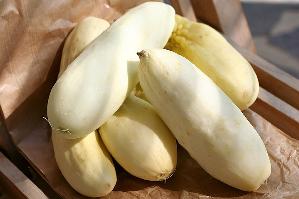 wihite cucumber