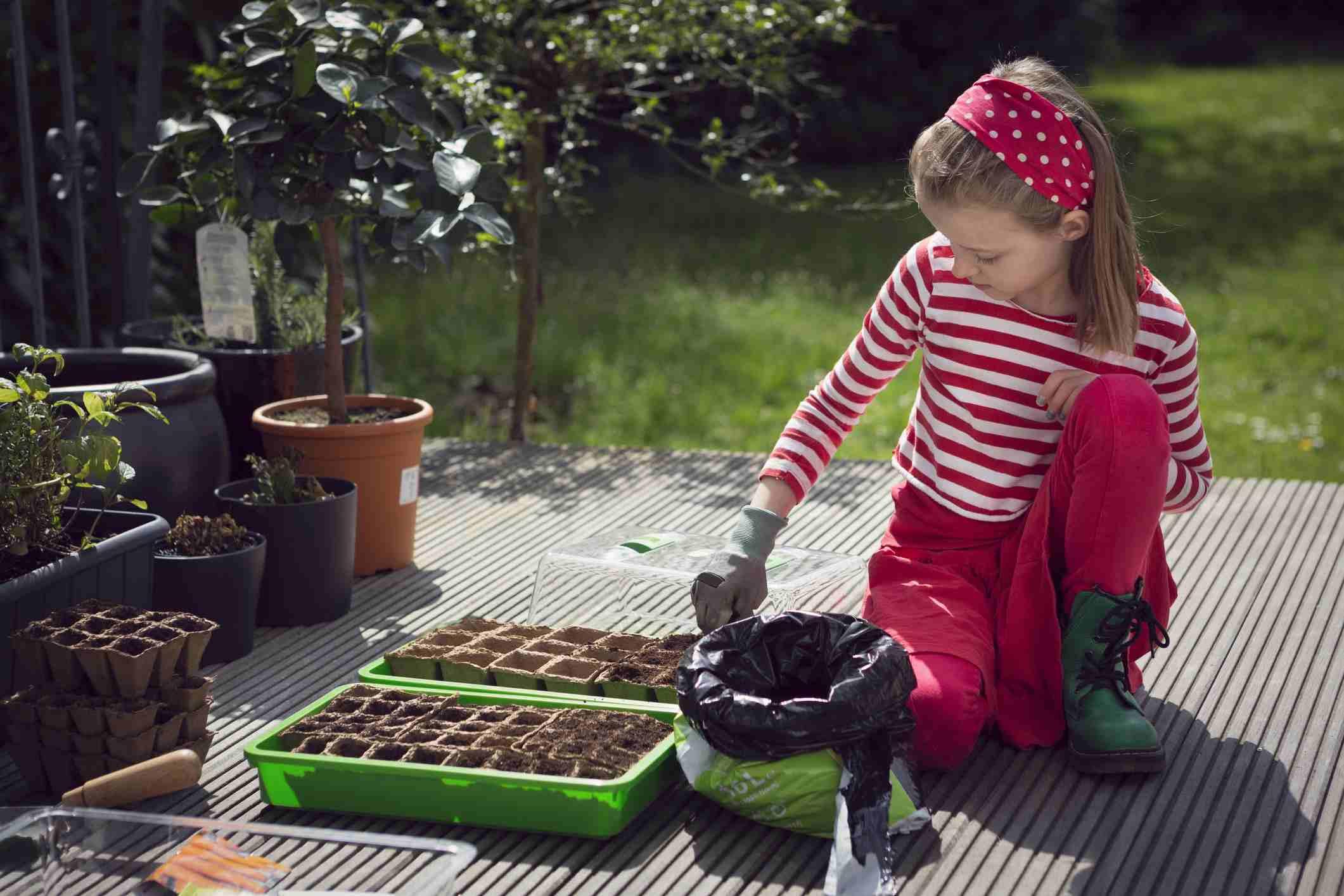 Niña plantando semillas en recipientes biodegradables
