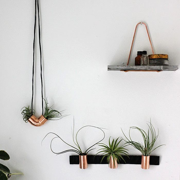 Copper airplant holders