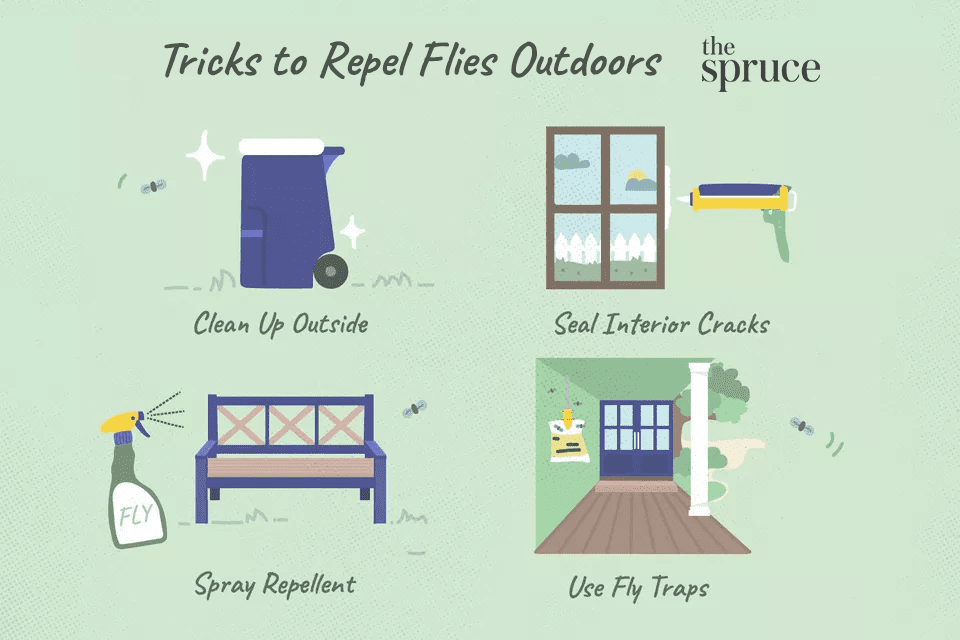 Illustration on tricks for getting rid of flies outdoors