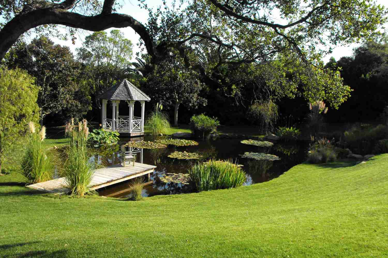 mirador cerca del estanque