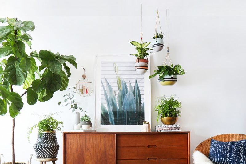 hanging planters assortment
