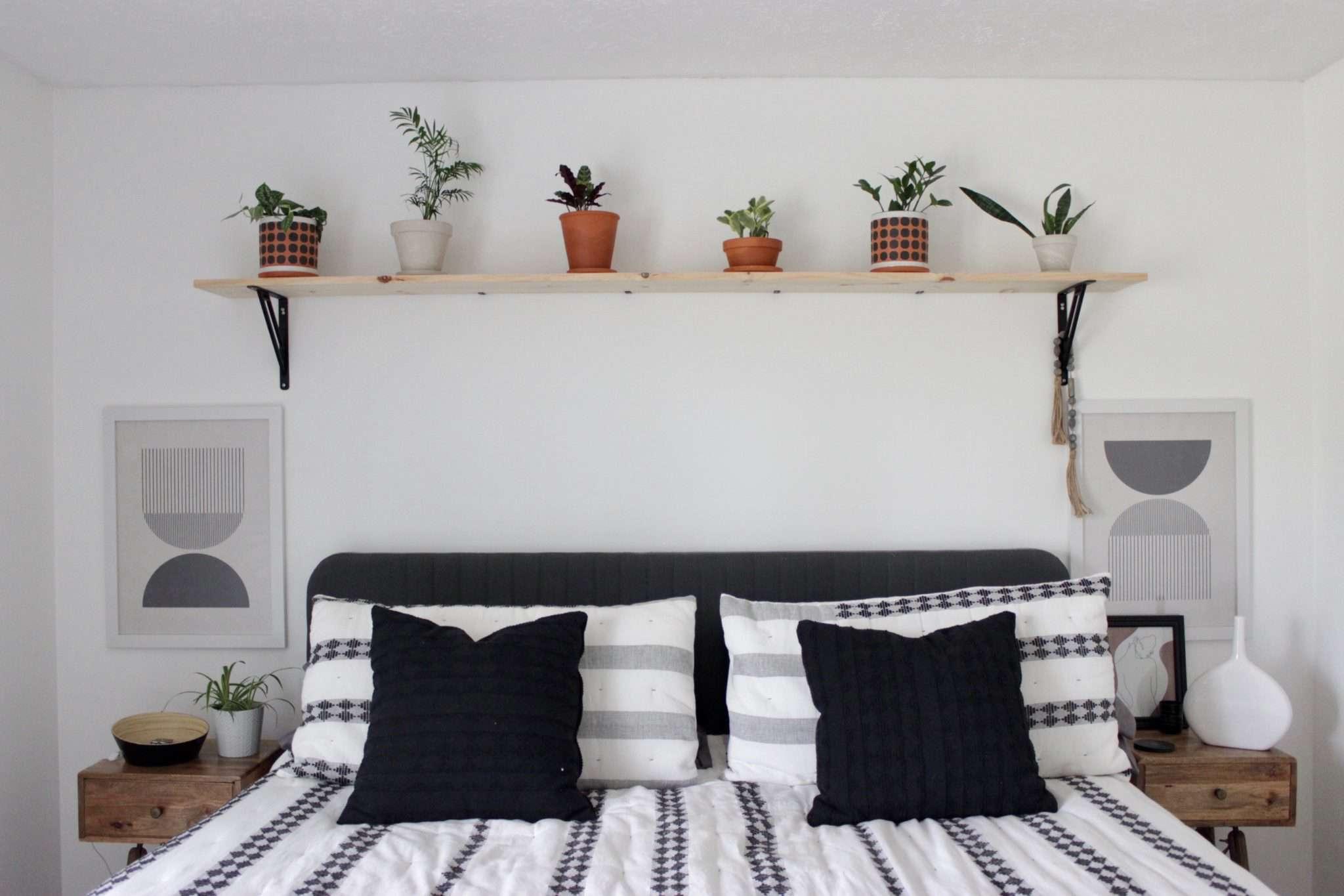 Rachel Schlather plant shelf