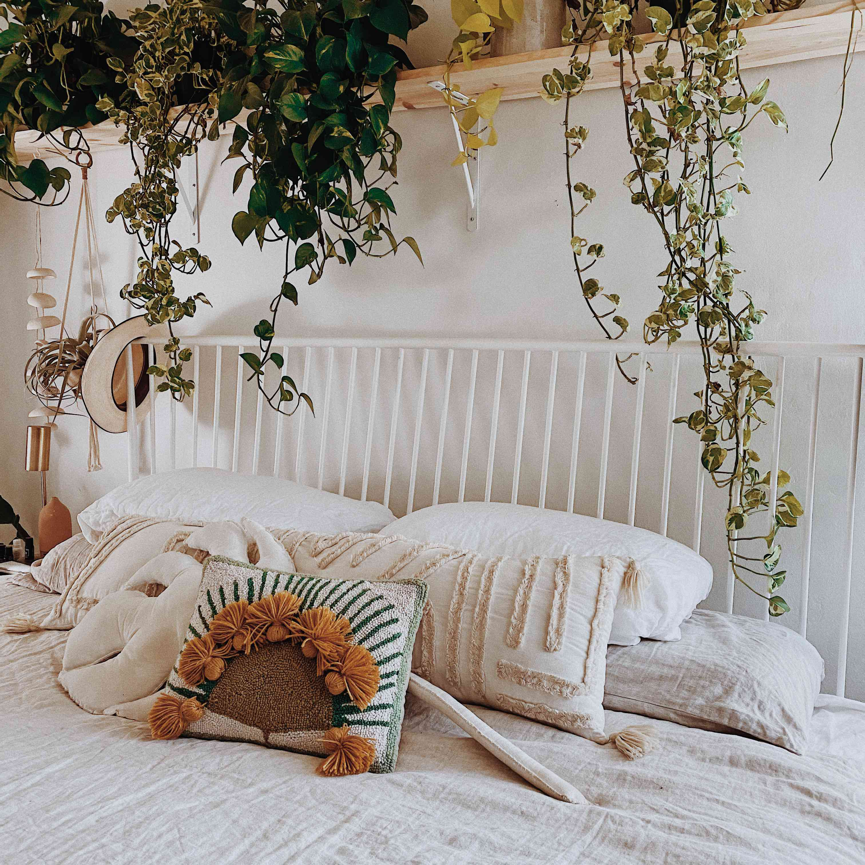 hanging plants in a bedroom