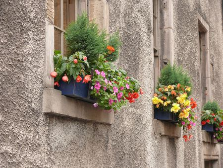 shade flowers for window boxes easy begonia window box flowers for shade