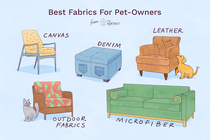 5 Great Pet Friendly Fabrics For Your Home, Dog Proof Furniture