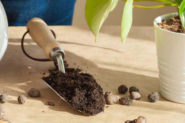 houseplant potting media