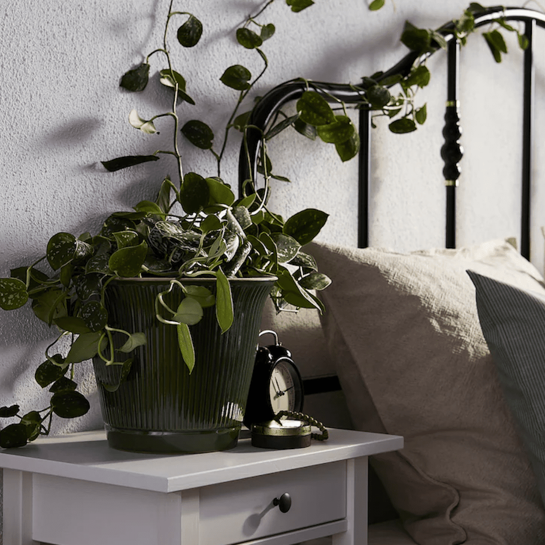 A green plant pot on a white bedside table