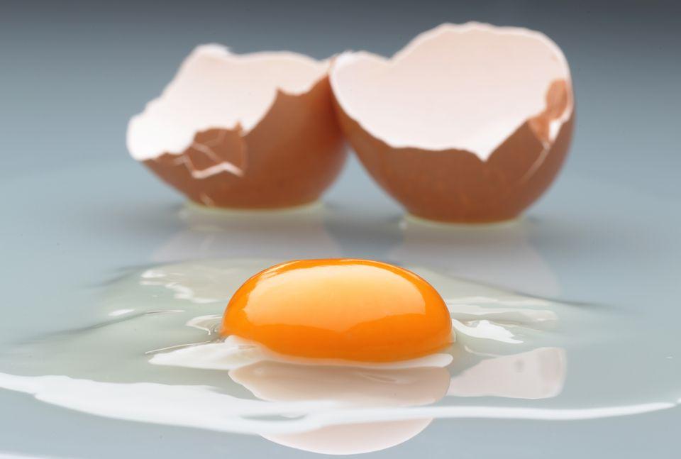Broken egg shell with egg