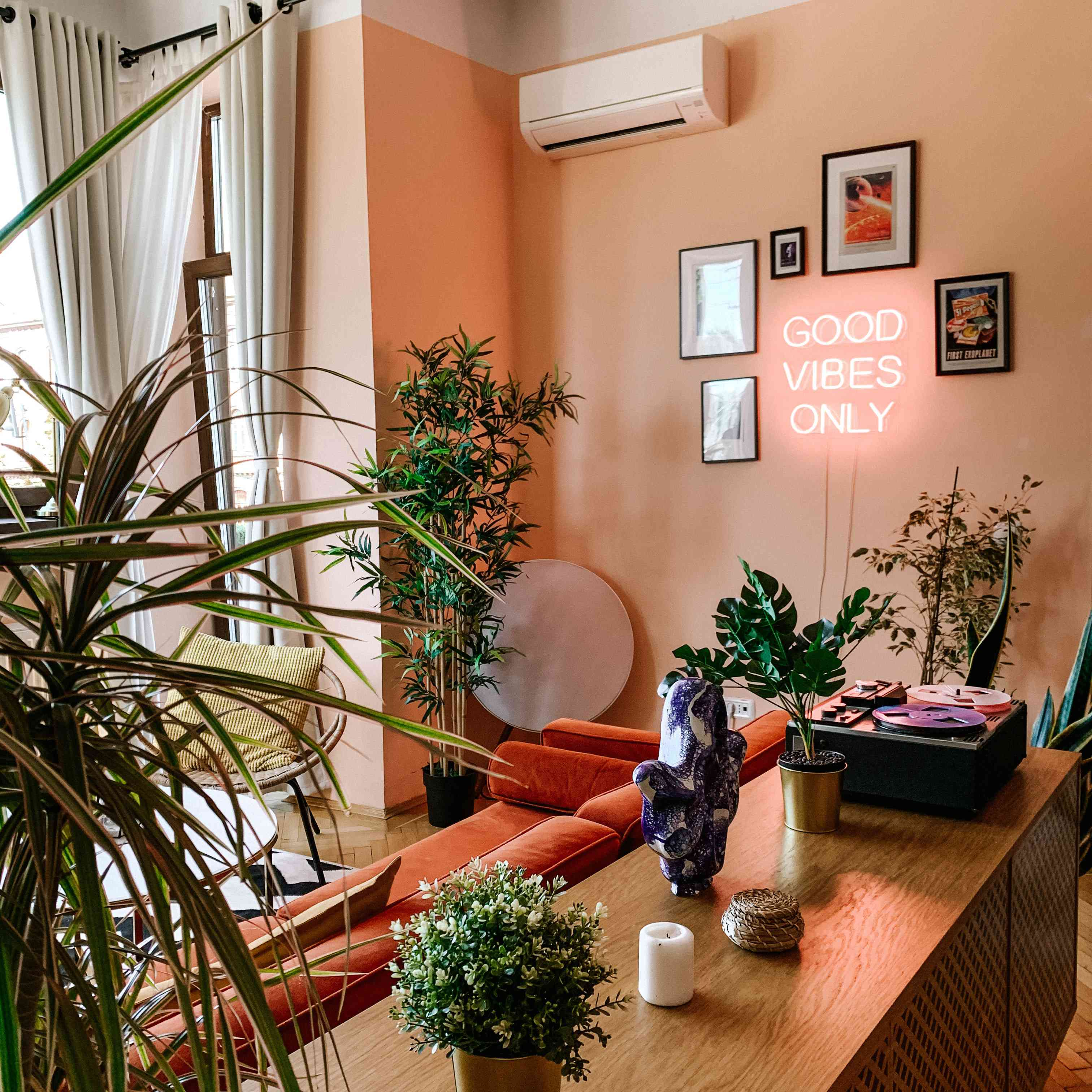 colorful earthy colored living room with plants