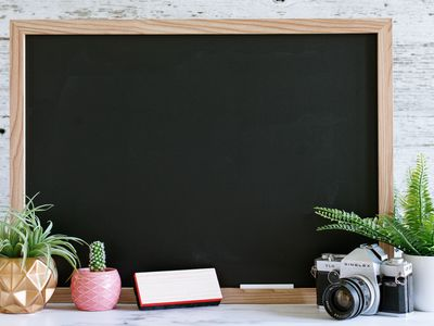 Clean chalkboard decorated with houseplants, camera, eraser and chalk stick