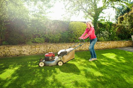 Everything You Need to Know About Buying a Lawn Mower