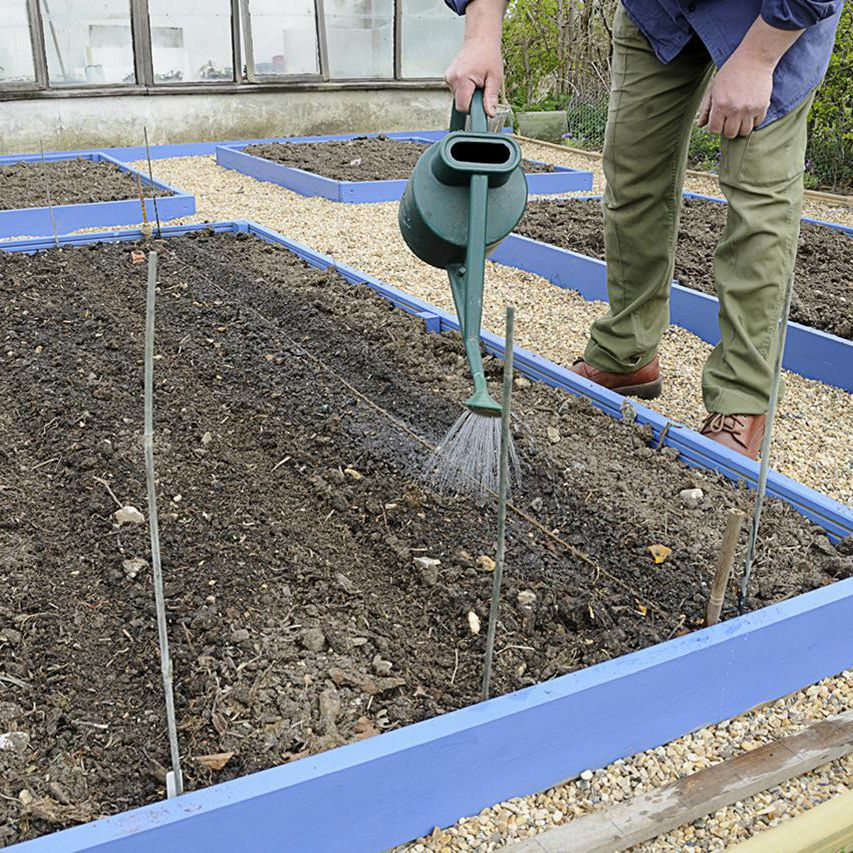 Before You Build Raised Beds