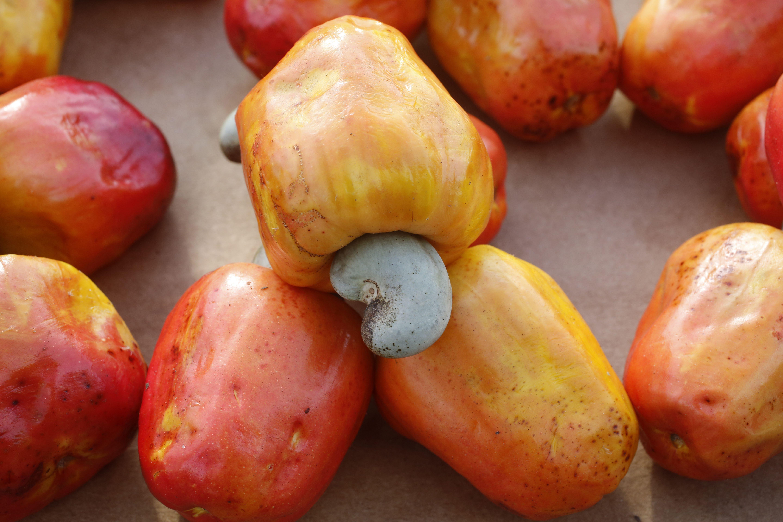 cashews 5ade1d dca cba