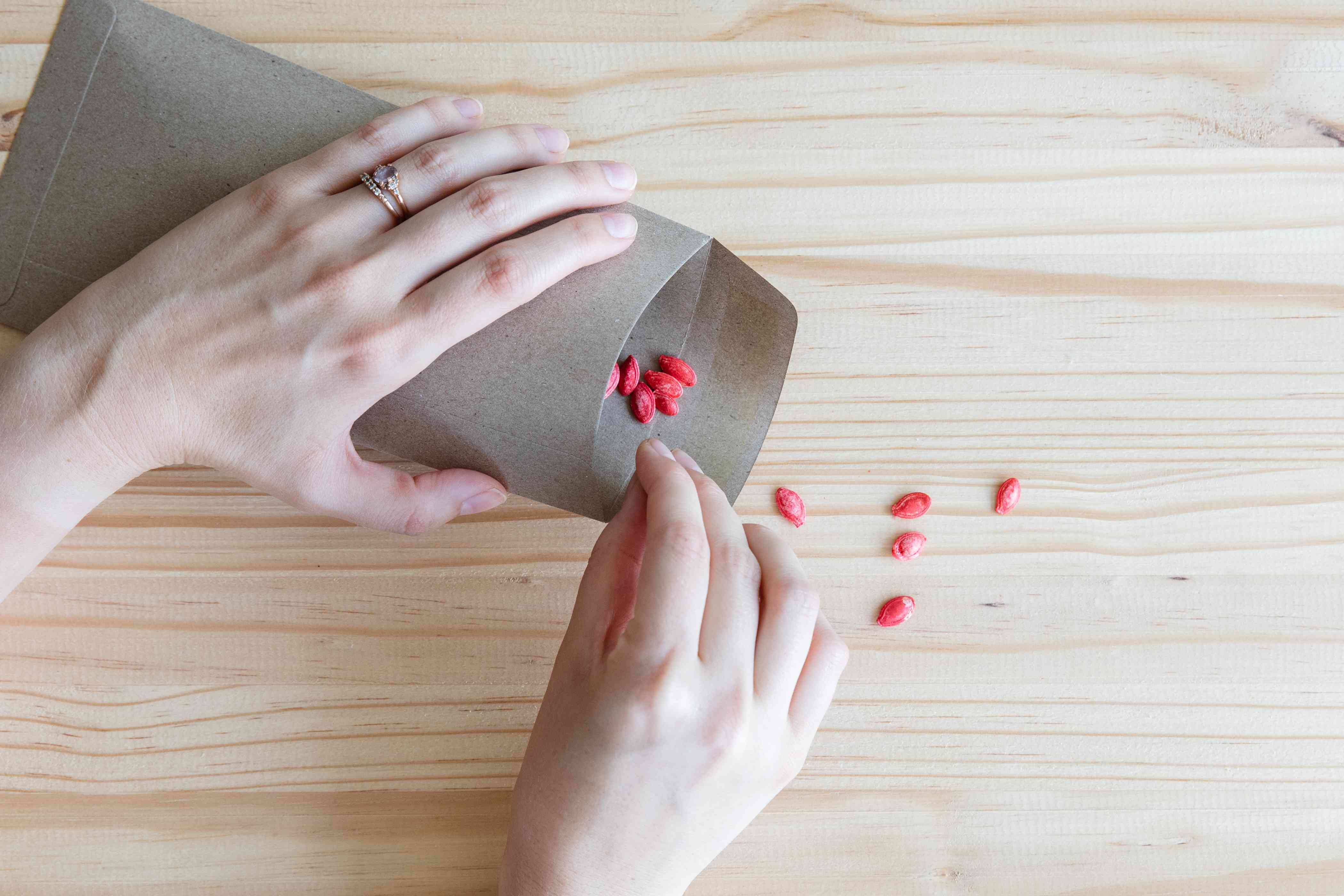 storing seeds in a dry envelope