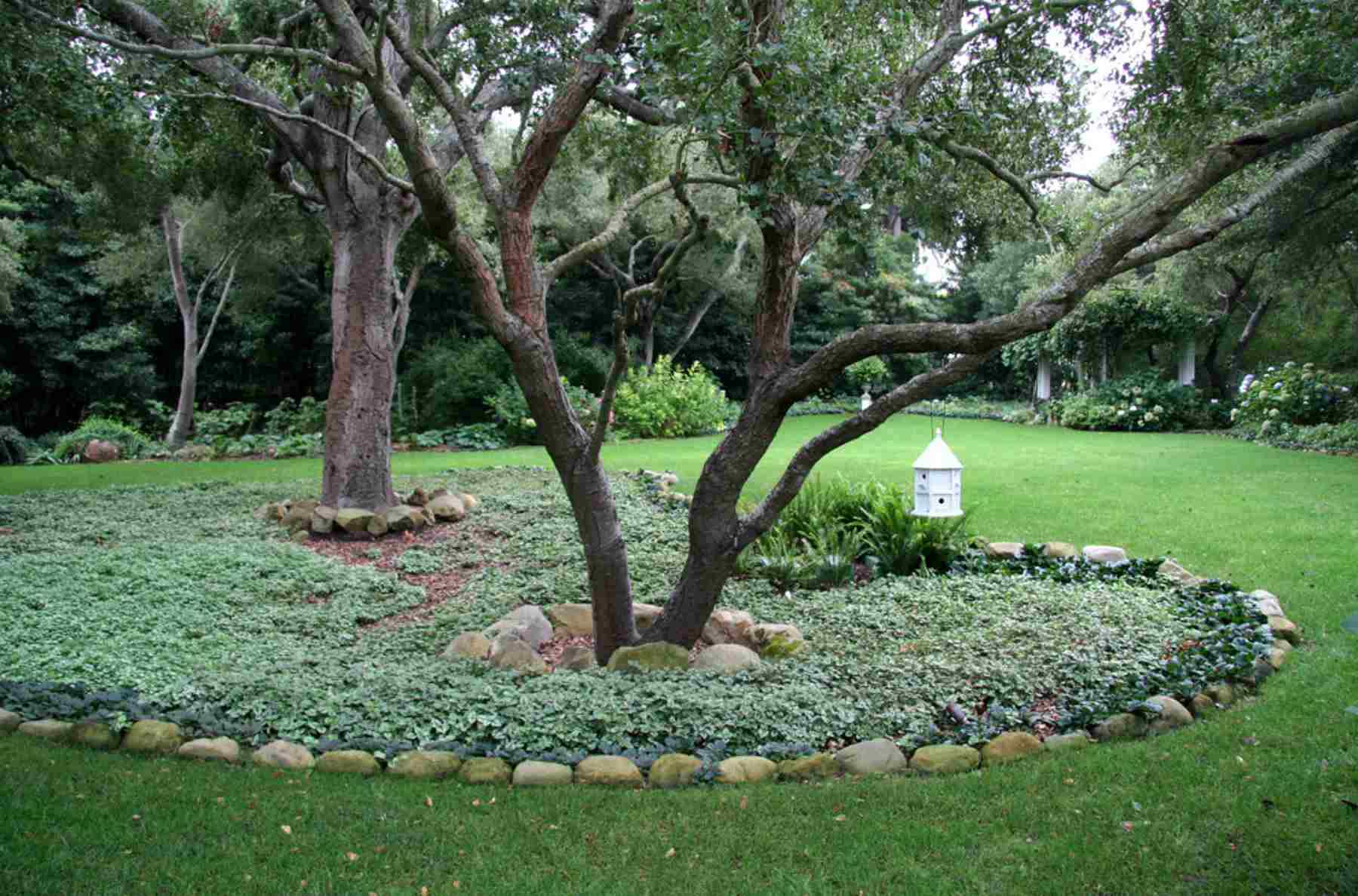 15 Ideas for Landscaping Around Trees