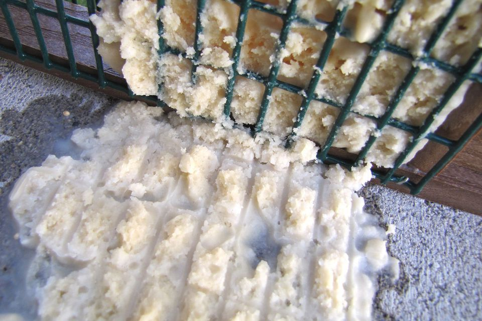 Melted Suet