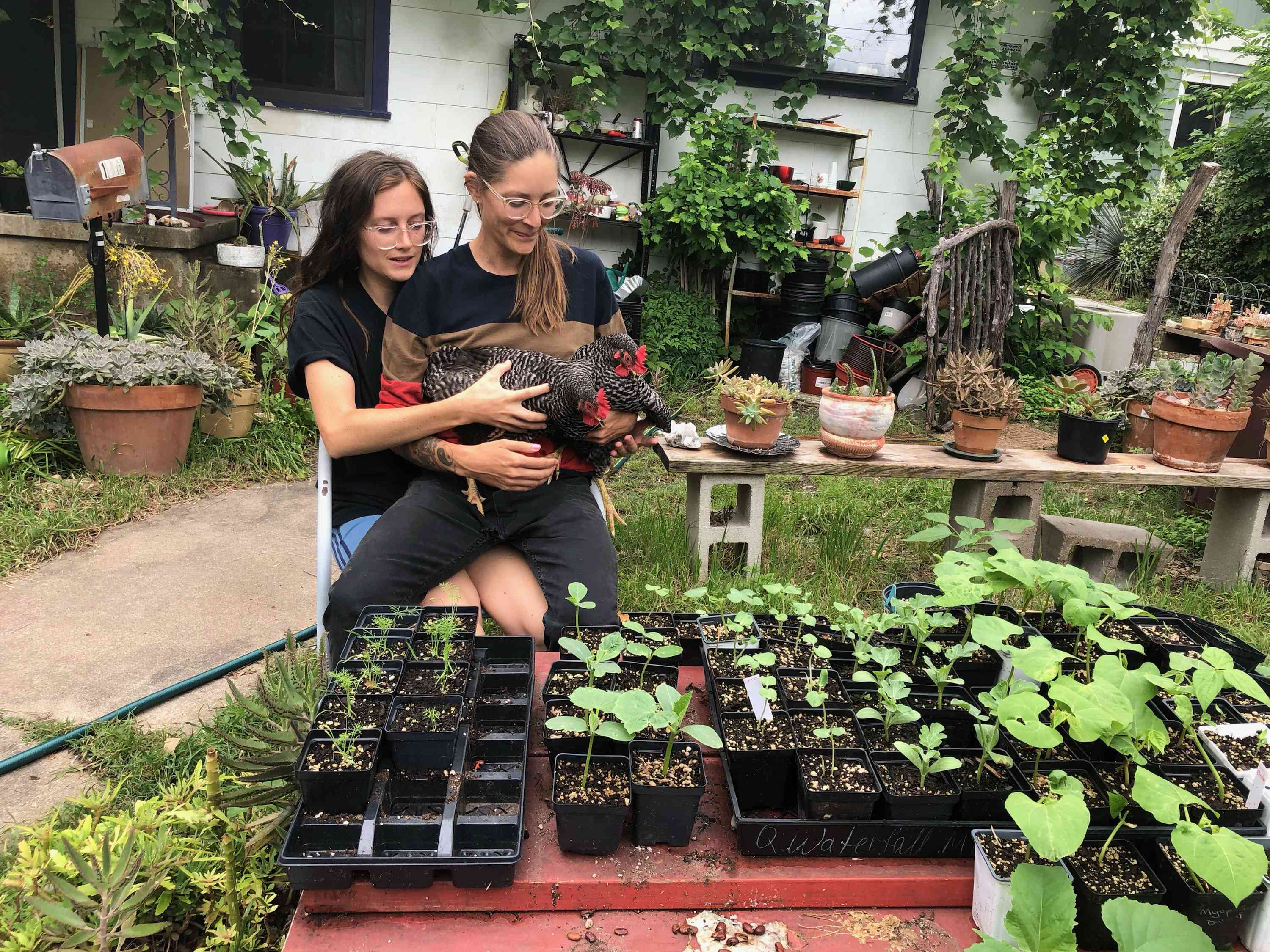 Nora Jay and Sara Wiebe from Front Yard Gardens with their plants and chickens