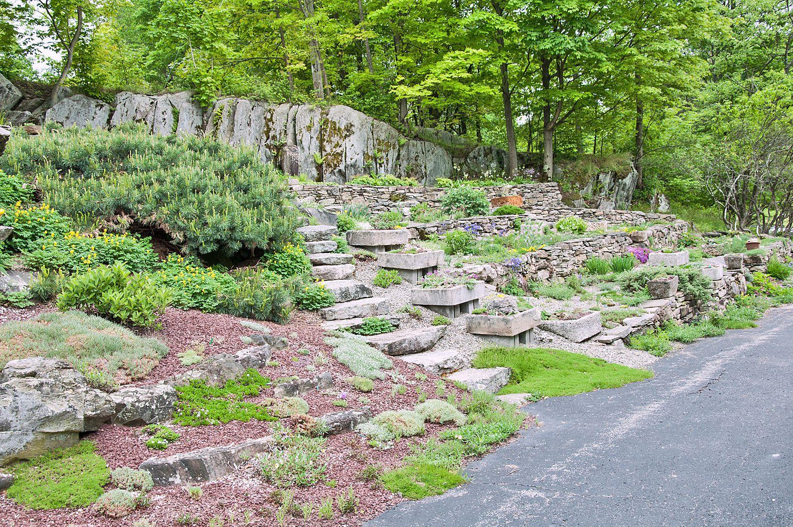 Use a Rocky Hillside to Create a Unique Garden
