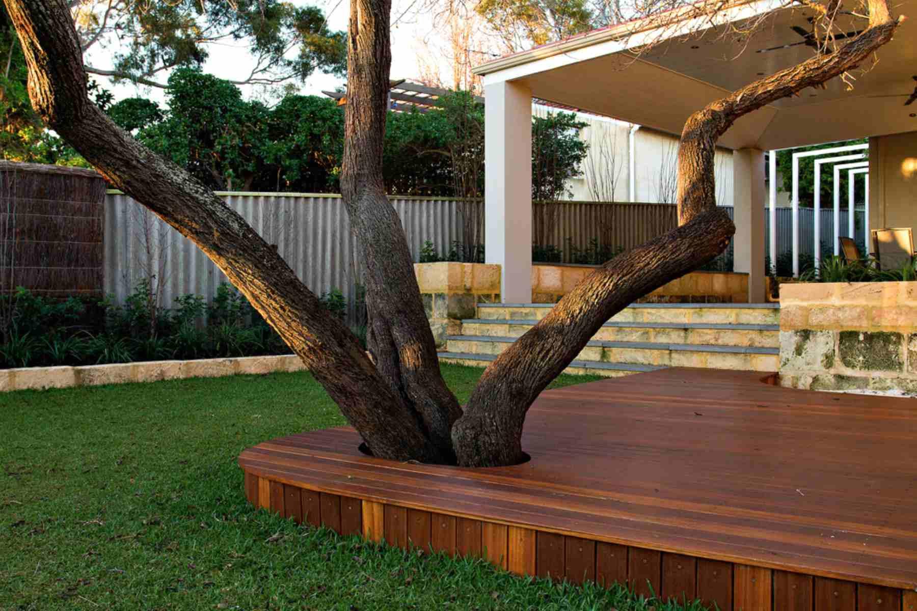 cubierta con árbol