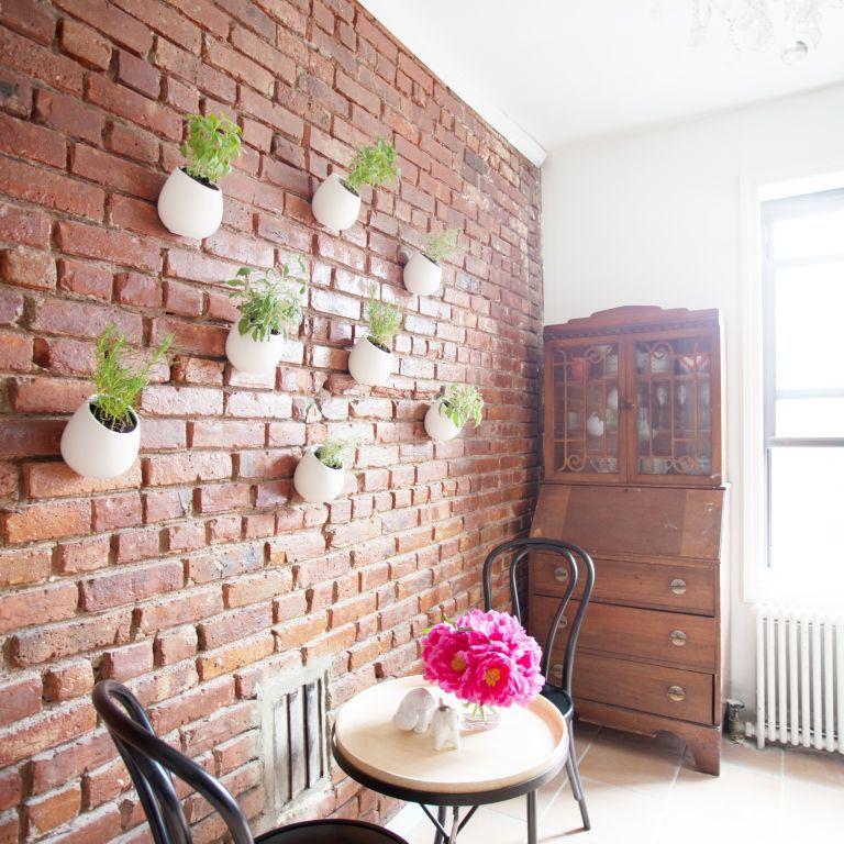 jardín de hierbas para colgar en la pared de ladrillo