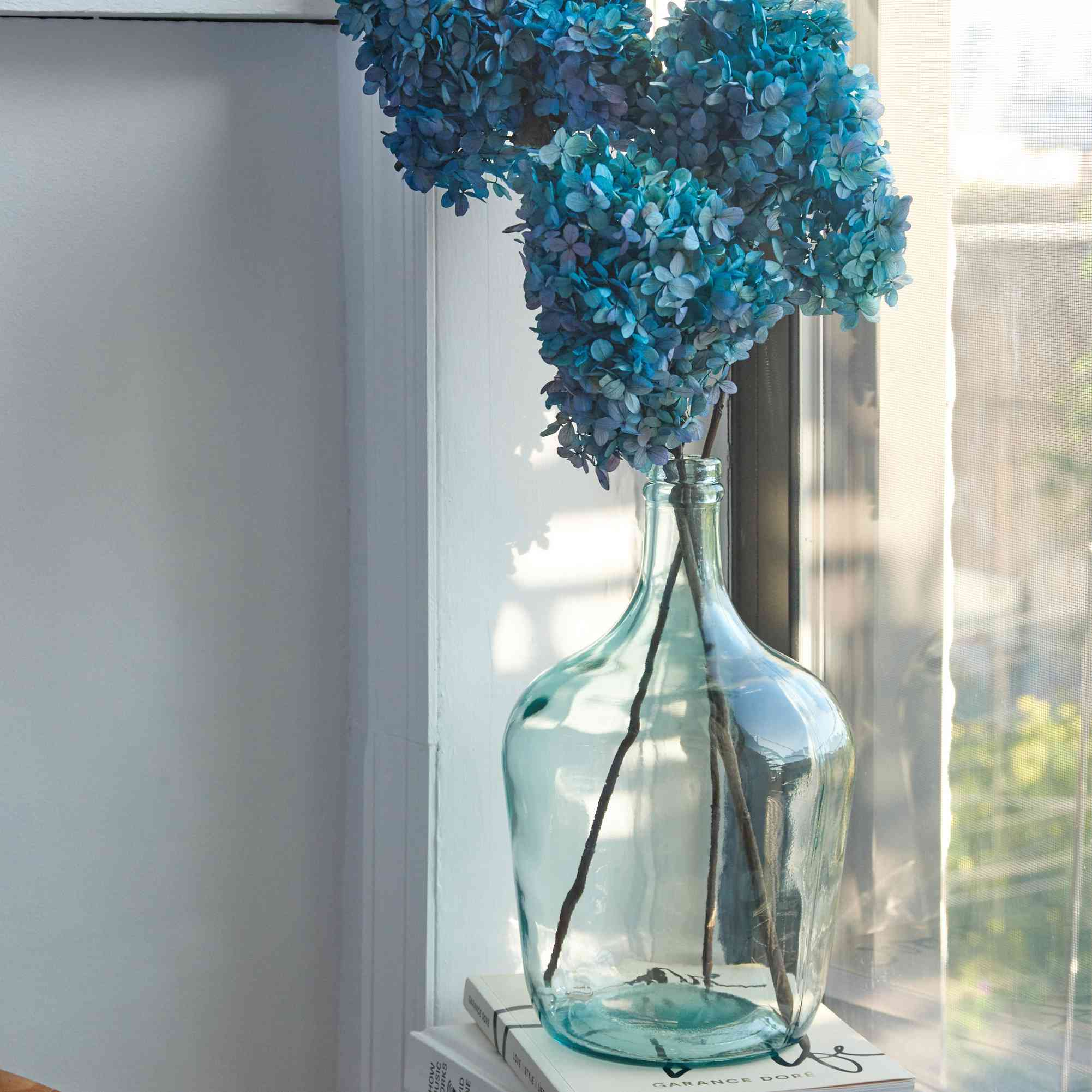 Dried hydrangea flowers being displayed in a vase
