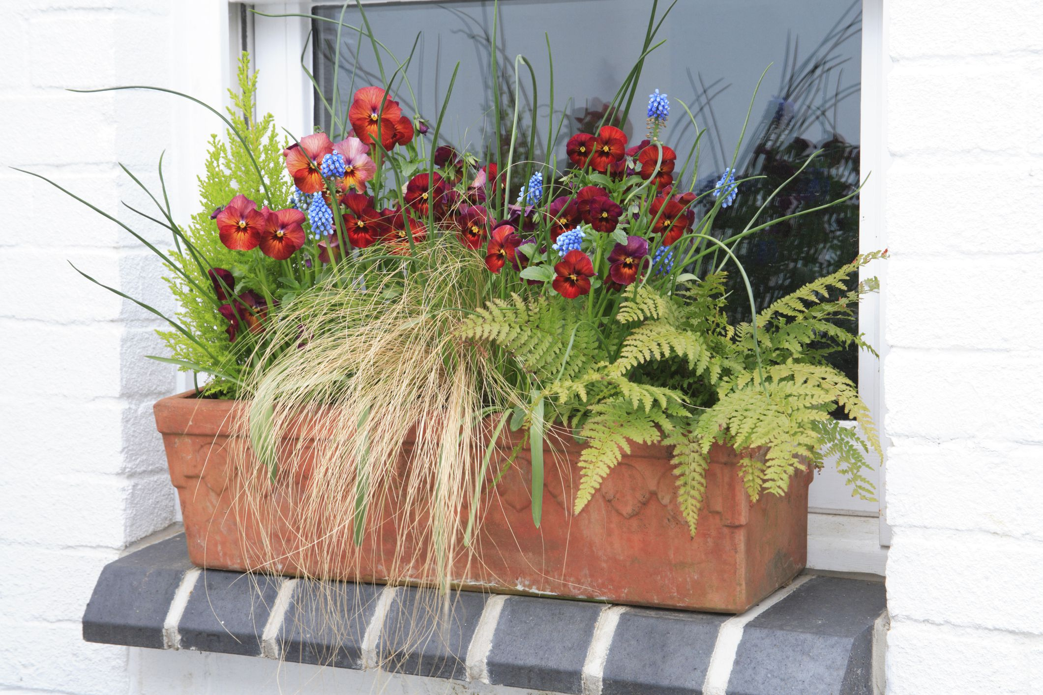 ideas for flower vase fillers with natural green flower.htm window box flowers for shady spots  window box flowers for shady spots
