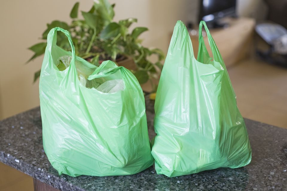 Green plastic bags on kitchen worktop.