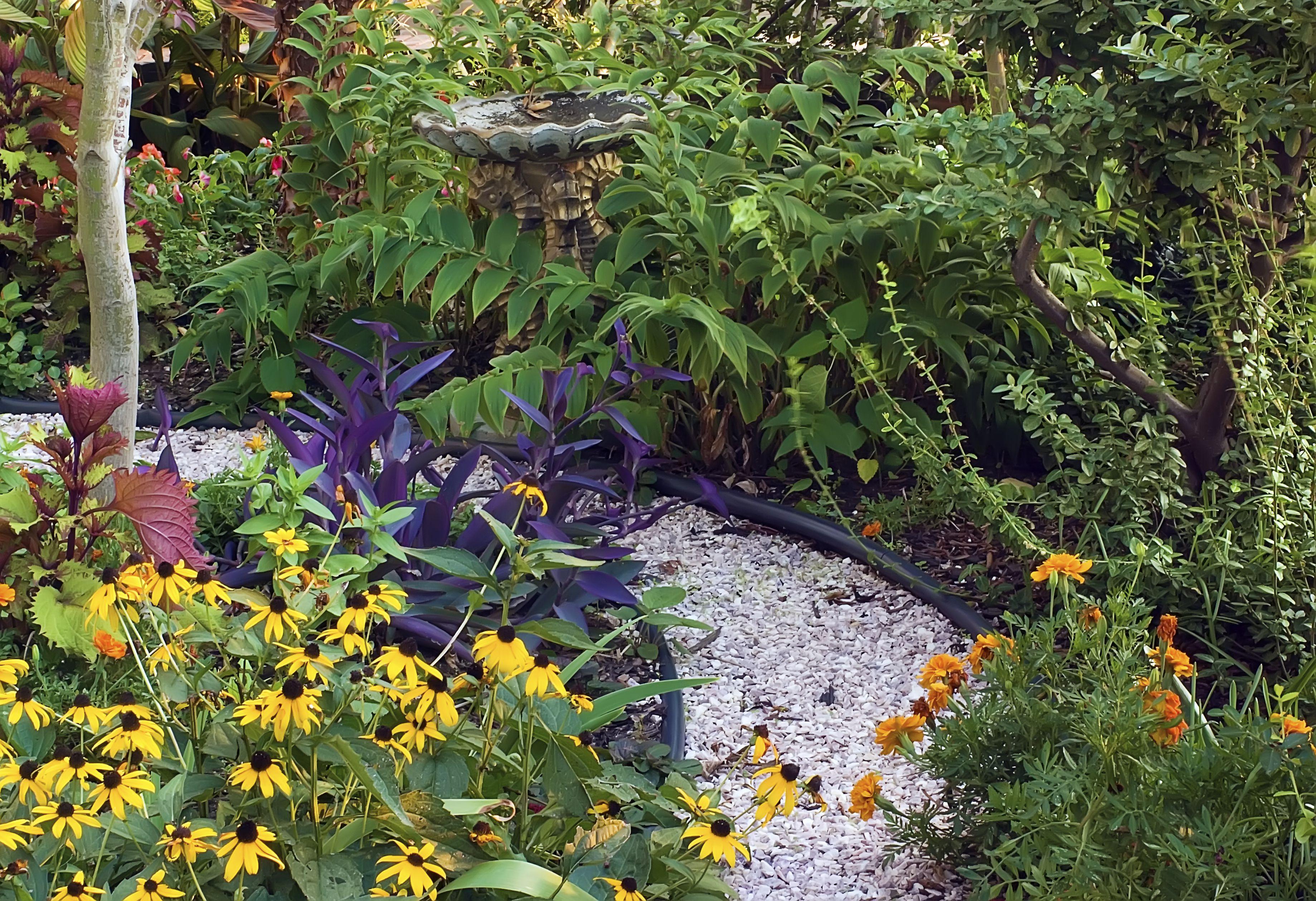 Sendero del pequeño jardín