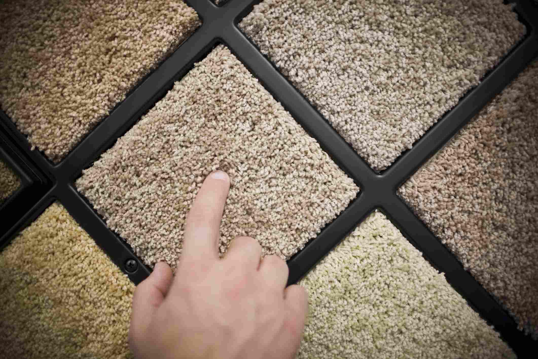 Triexta color wall carpet samples