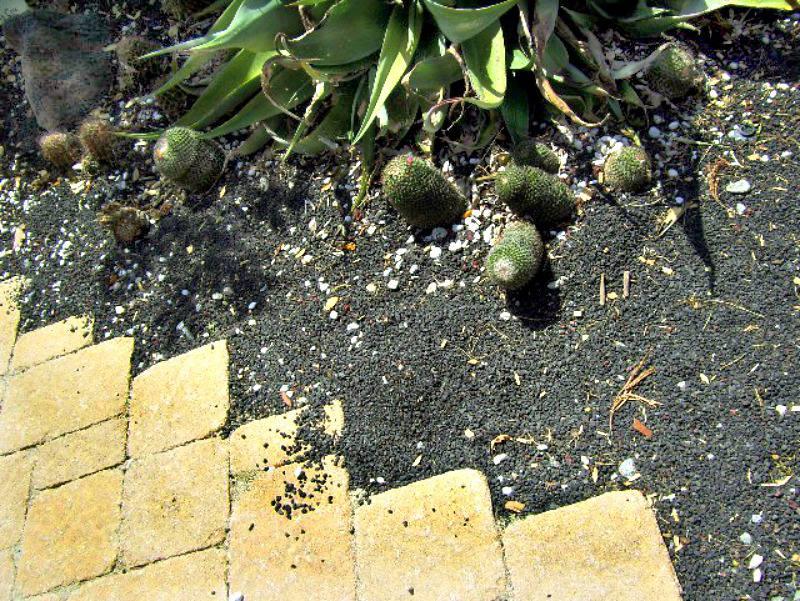 cobblestones and black gravel