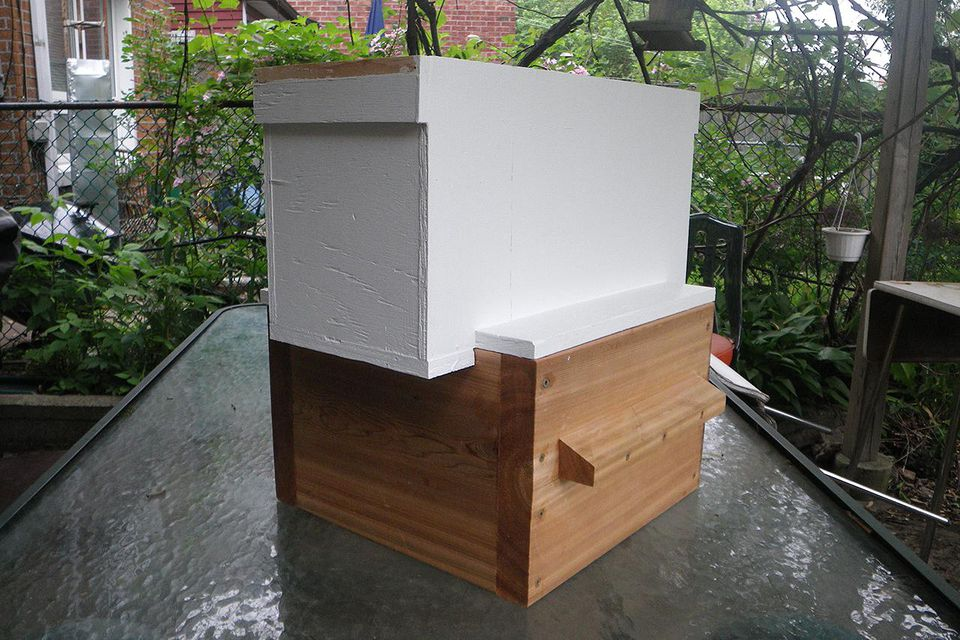 A standard 5-frame langstroth beehive.
