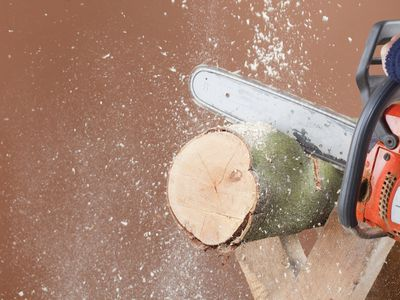 chainsaw working on wood