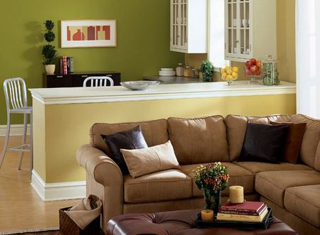 Modern Green Living Room Color