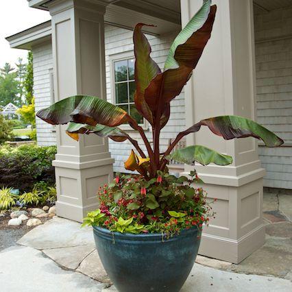 A beautiful Lunaform pot at Coastal Maine Botanical Gardens