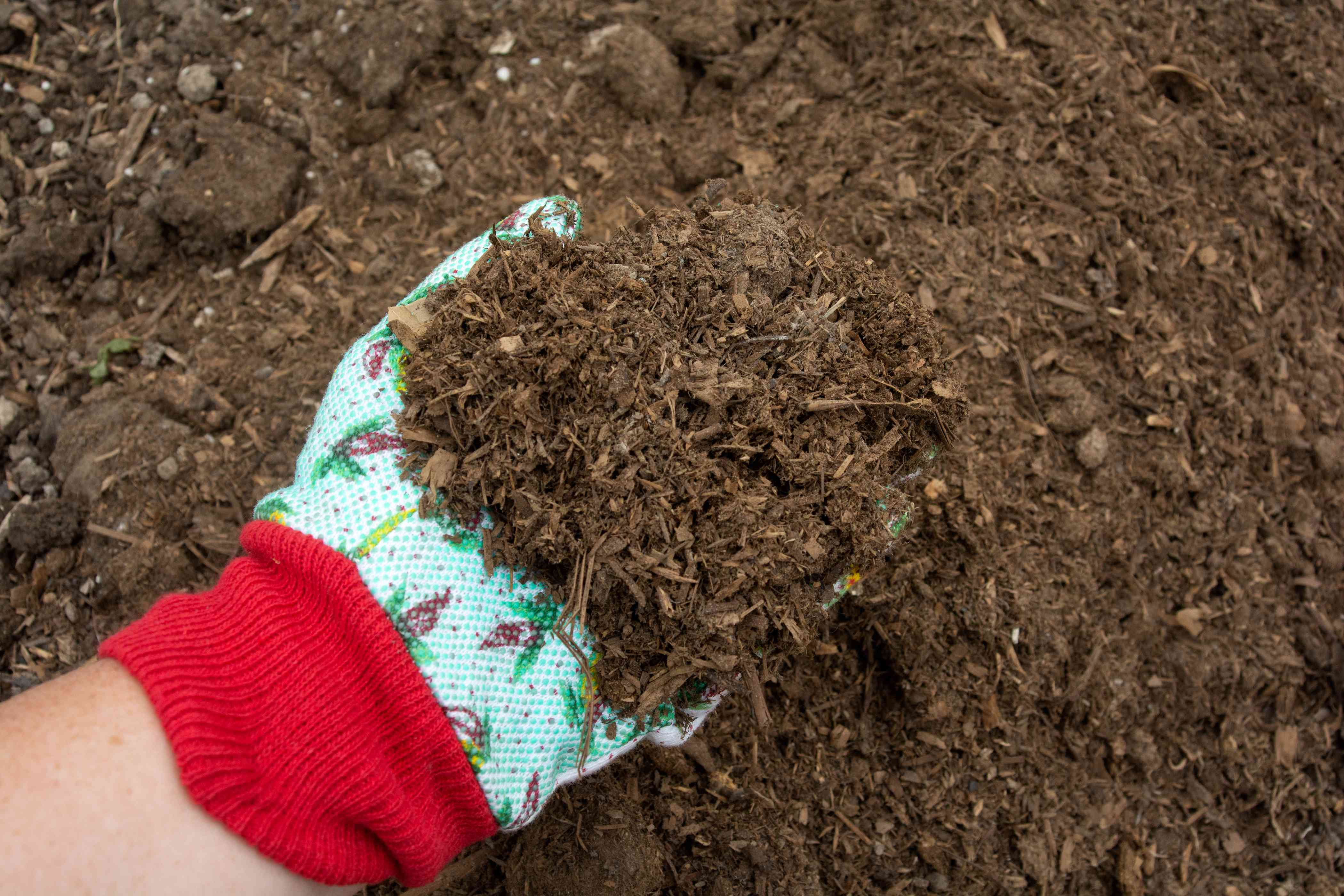 Soil texture mixed with decaying organic materials