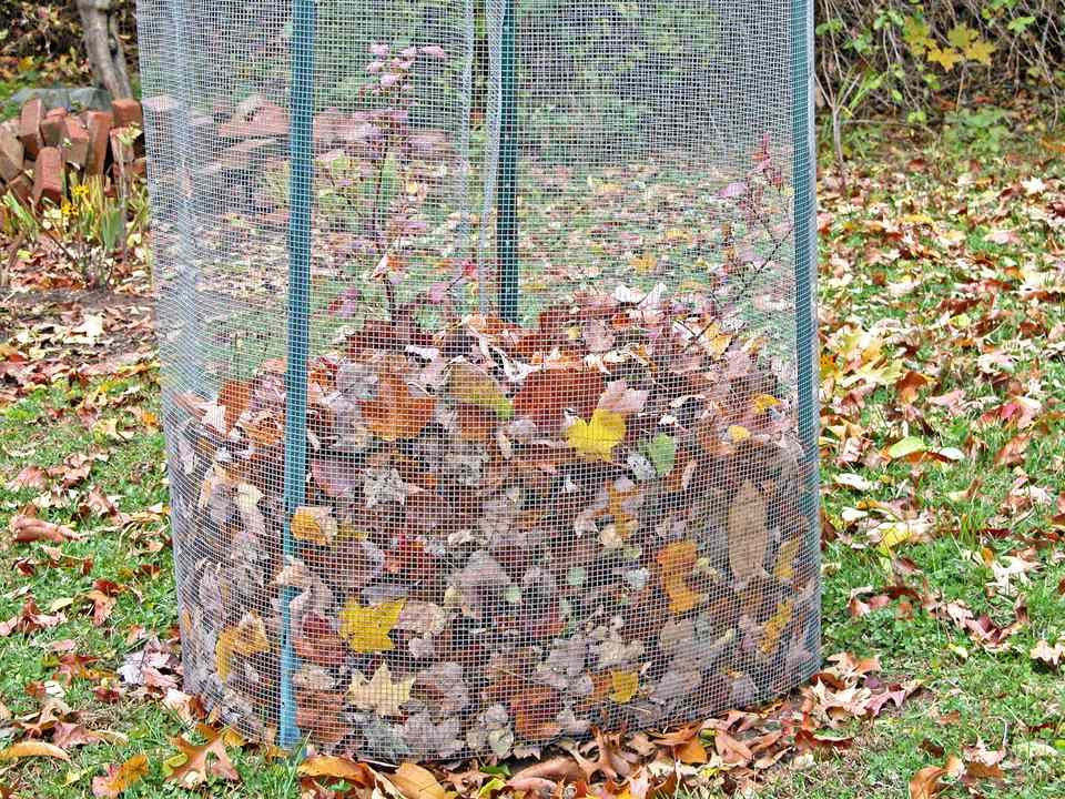 Protecting potted plants in winter