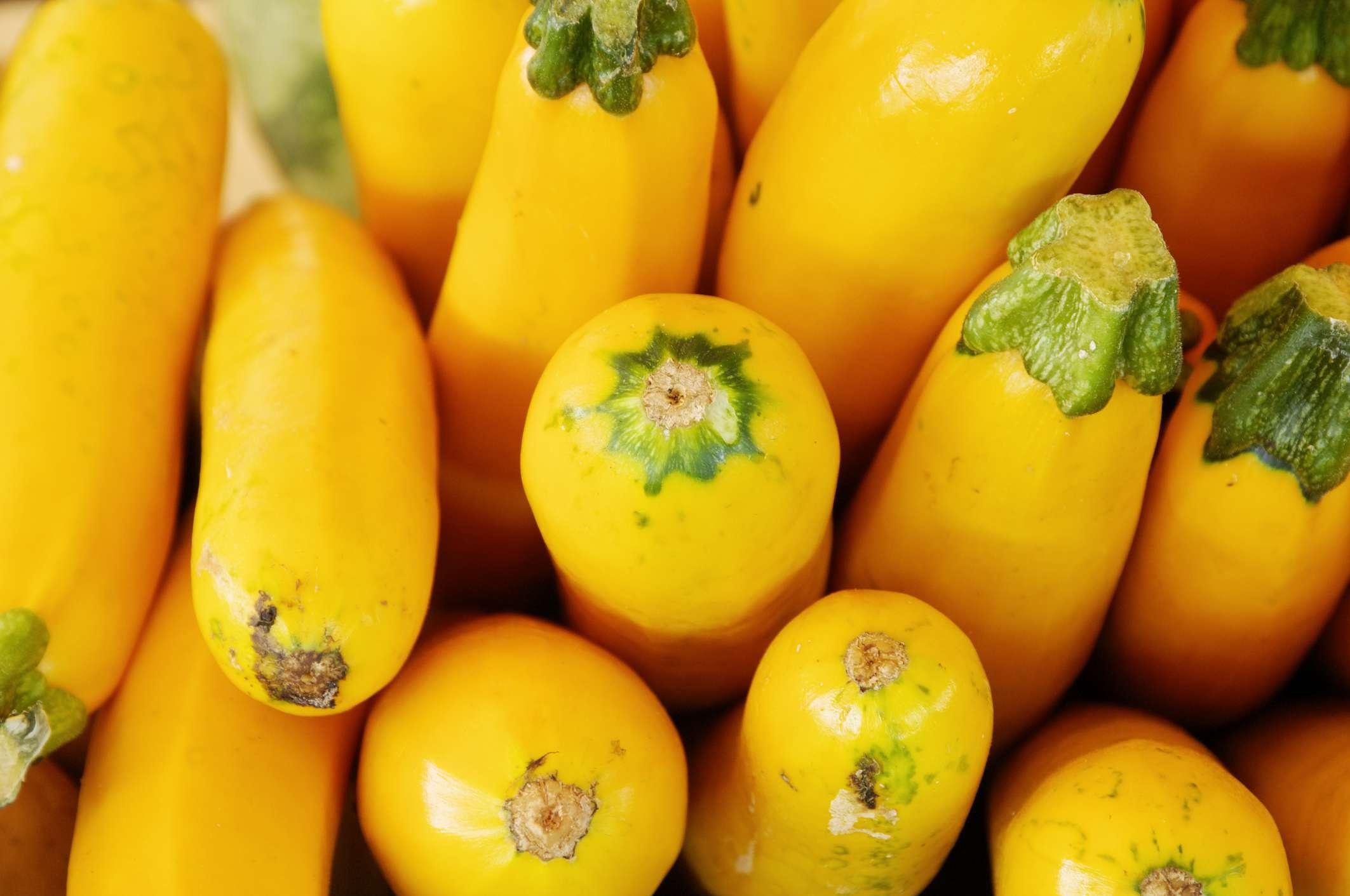 Yellow squash at farmer's market