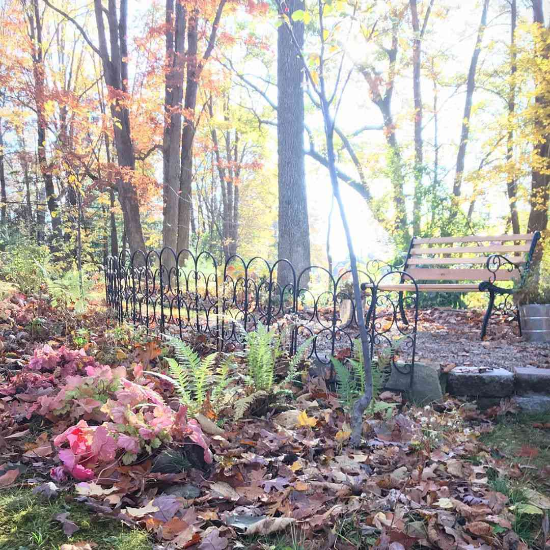 woodland garden setting with bright red leafed heucheras and bench